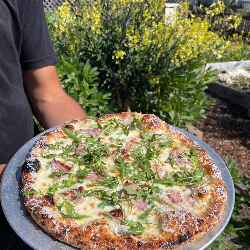 Mendocino Dining Guide California