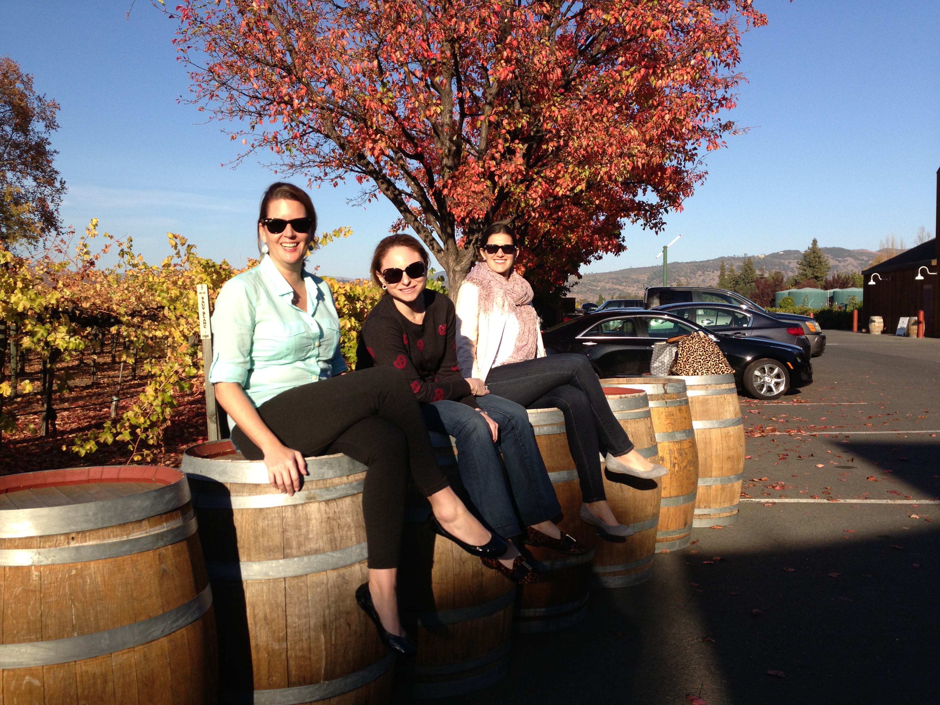 Robert Sinskey Winery A Must See On California's Silverado Trail