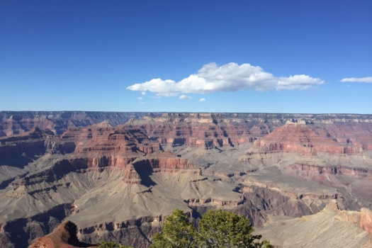 Bicycling The Grand Canyon