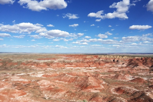 Petrified Forest & Painted Desert In Northeastern Arizona
