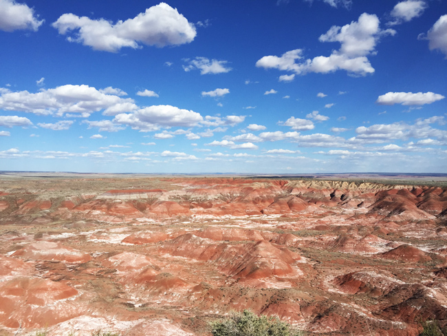 Petrified Forest & Painted Desert