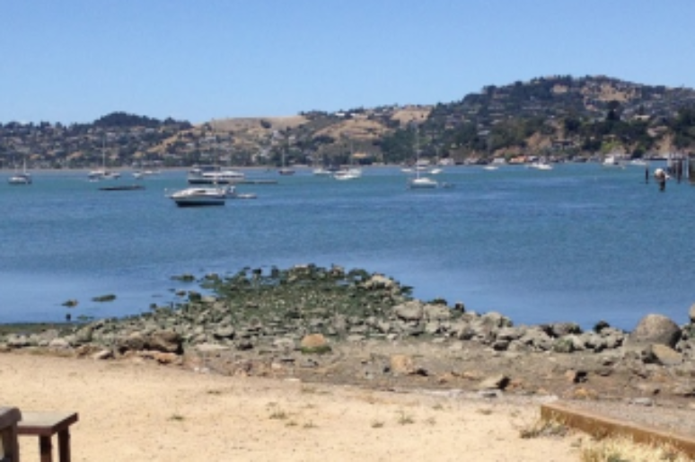 Bar Bocce Sausalito With The Best Pizza & Views In Town