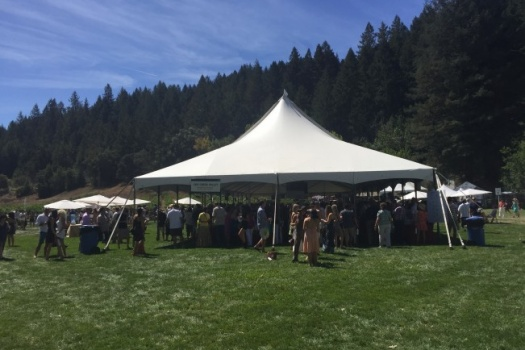 Sonoma Wine Country Weekend 2015 Top 10 Highlights