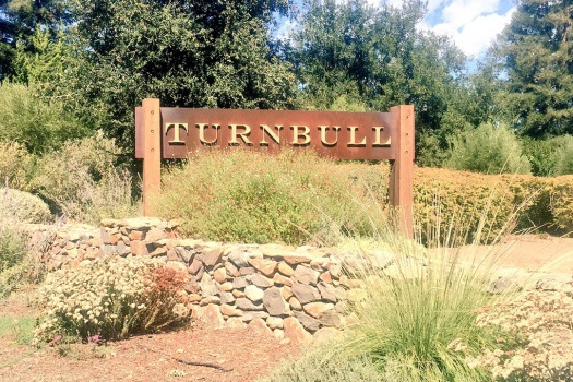 Turnbull Wine Cellars A Must Experience in Napa Winery