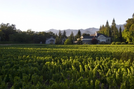 The Best Napa Valley Wineries Including Fabulous Duckhorn Vineyards