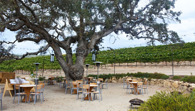 Cass Winery Paso Robles