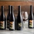 MacPhail Wines