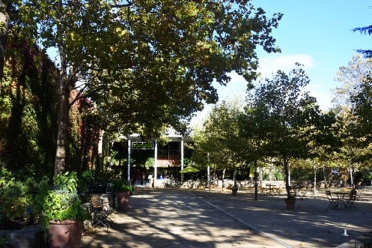 St. Supery One Of The Most Amazing Napa Valley Wineries Where You Are Treated Like Royalty