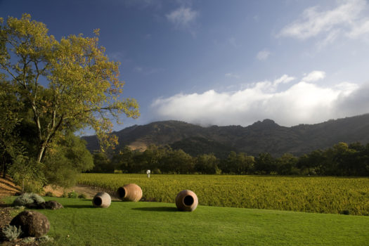 The Judgment of Paris Celebration With Stag's Leap Wine Cellars