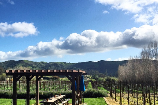 Melville Winery a Sta. Rita Hills Winery That I Adore