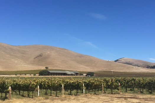 Winery Tour with Byron Winemaker Jonathan Nagy