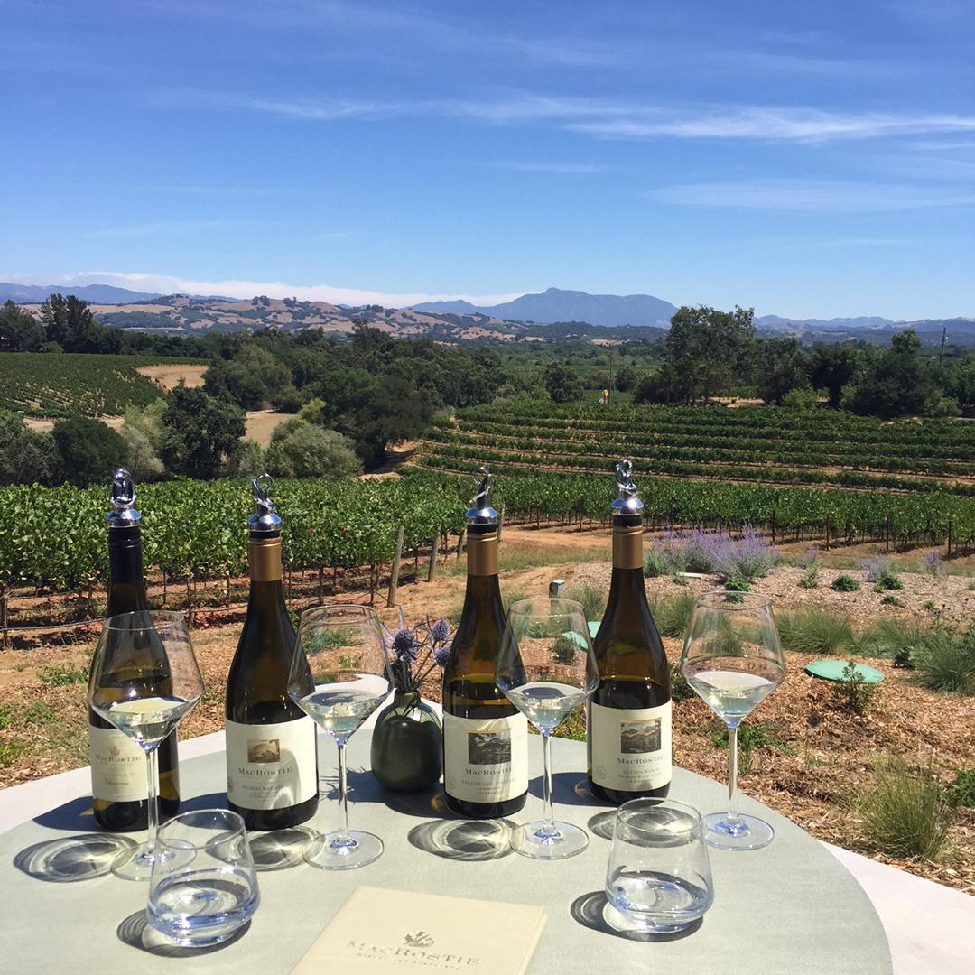 Macrostie Winery & Vineyards