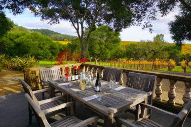 The Top 10 Dry Creek Wineries That I Adore