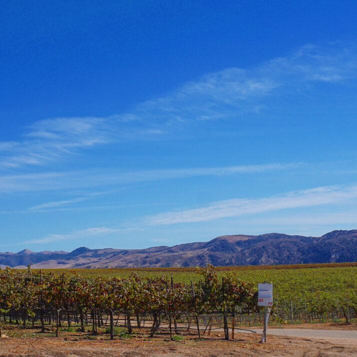 California Winery Regions