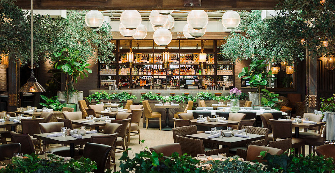 Chicago's Hottest Restaurants You Must Experience