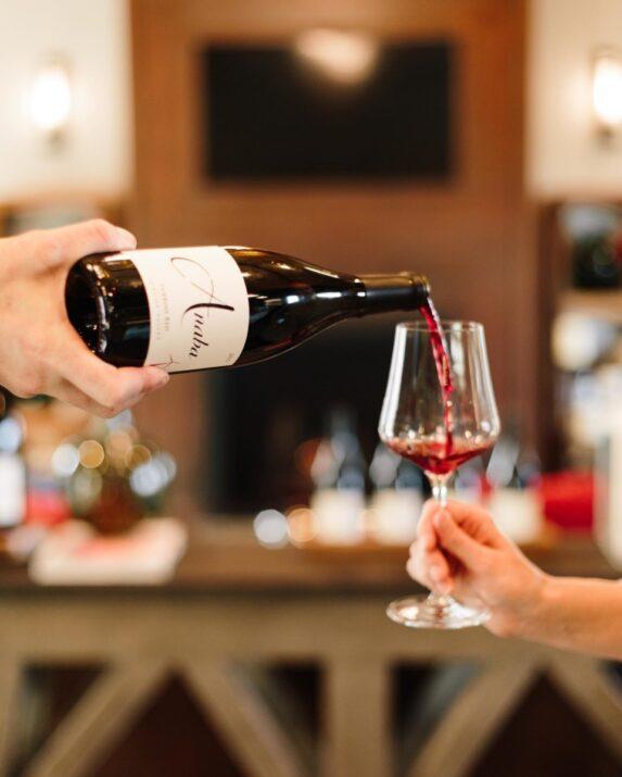 Sonoma Syrah Wines
