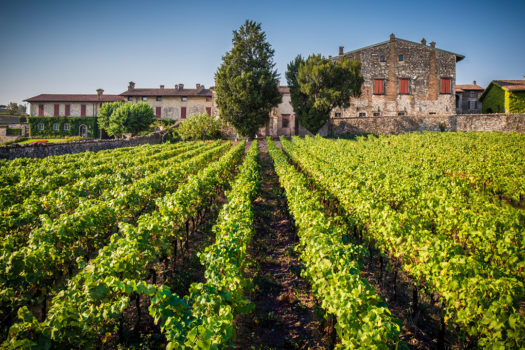 Franciacorta Italy's Wineries & My Media Trip Part One
