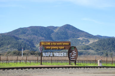 Calistoga Wine Country's Must See Wineries