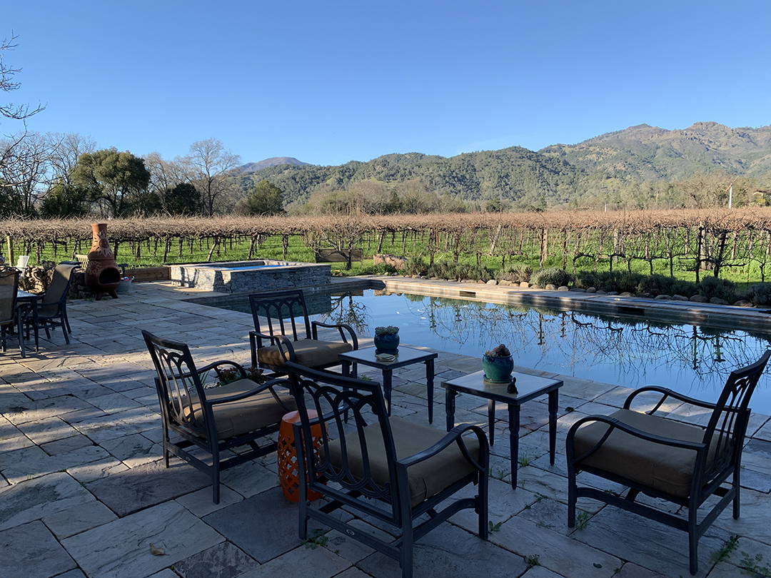 Canard Vineyard Calistoga
