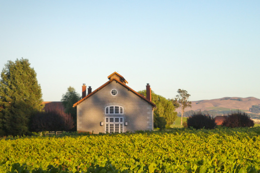 Stunning Etude Winery & Their Amazing Wines
