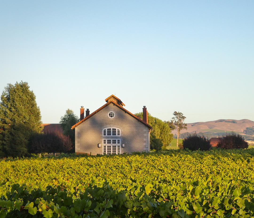 Etude Wines Napa California