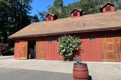 A Fabulous Tasting at Freeman Winery, Sebastapol Sonoma