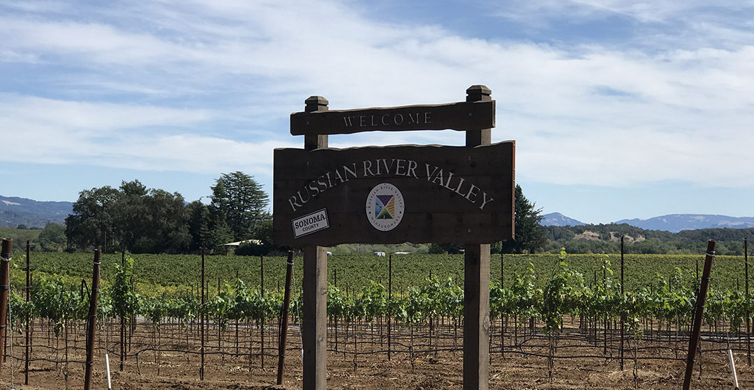 The Russian River Valley California's Top 10 Wineries