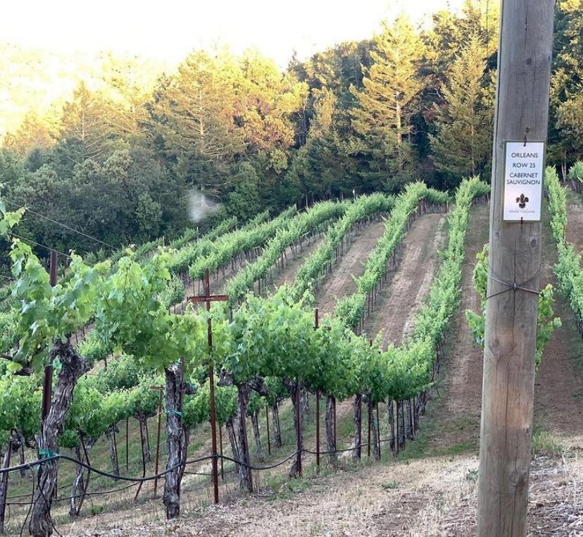 California Vineyards