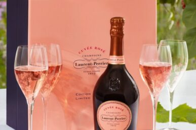 The Best Rosé Champagne Wines That I Adore