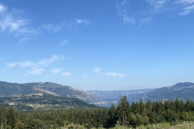 Columbia Gorge Wineries You Must Visit