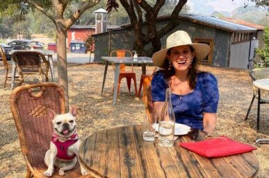 My Favorite Dog Products For Ernestine The Frenchie