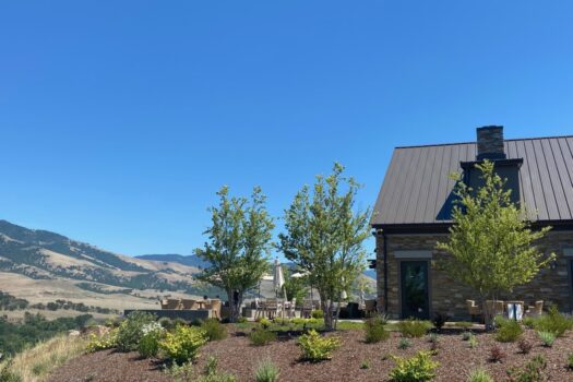 Gorgeous Irvine & Roberts Vineyards in Ashland Oregon