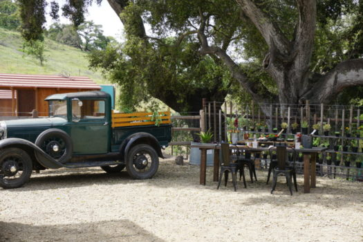 Picnic with Chef John Cox of The Bear & Star at Fess Parker