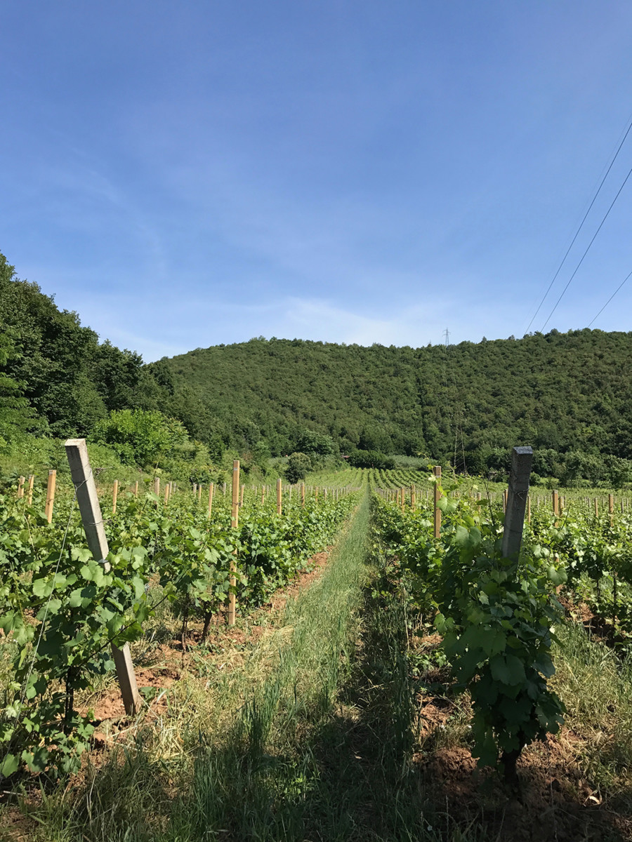 La Valle Franciacorta