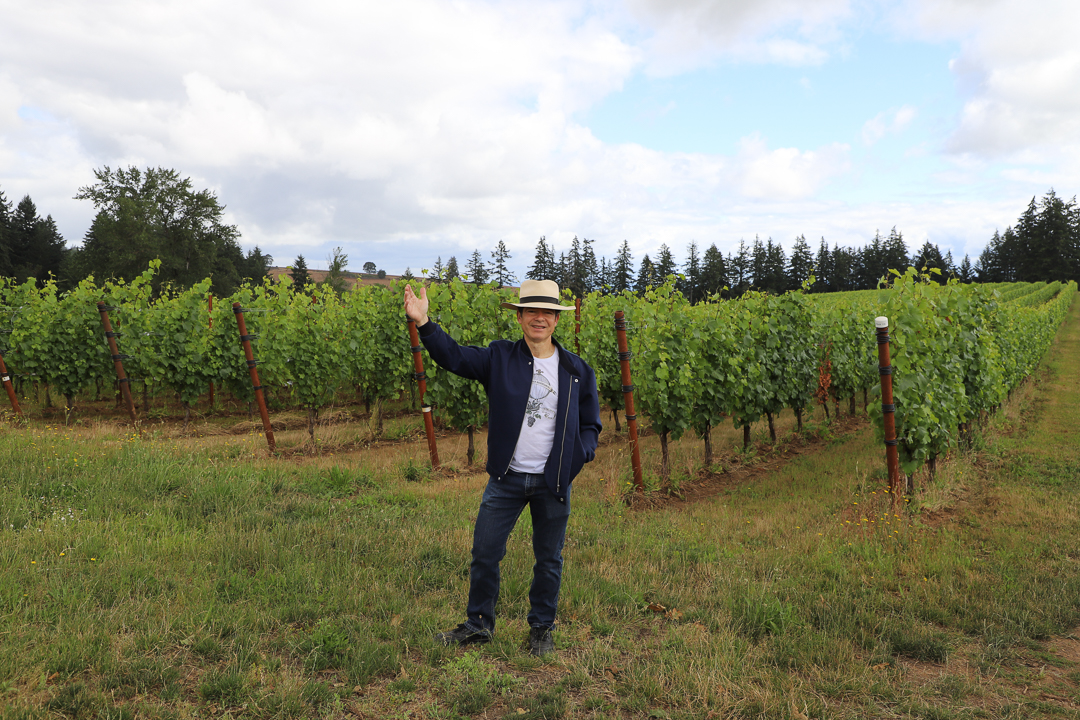 Incredible Oregon Vineyards