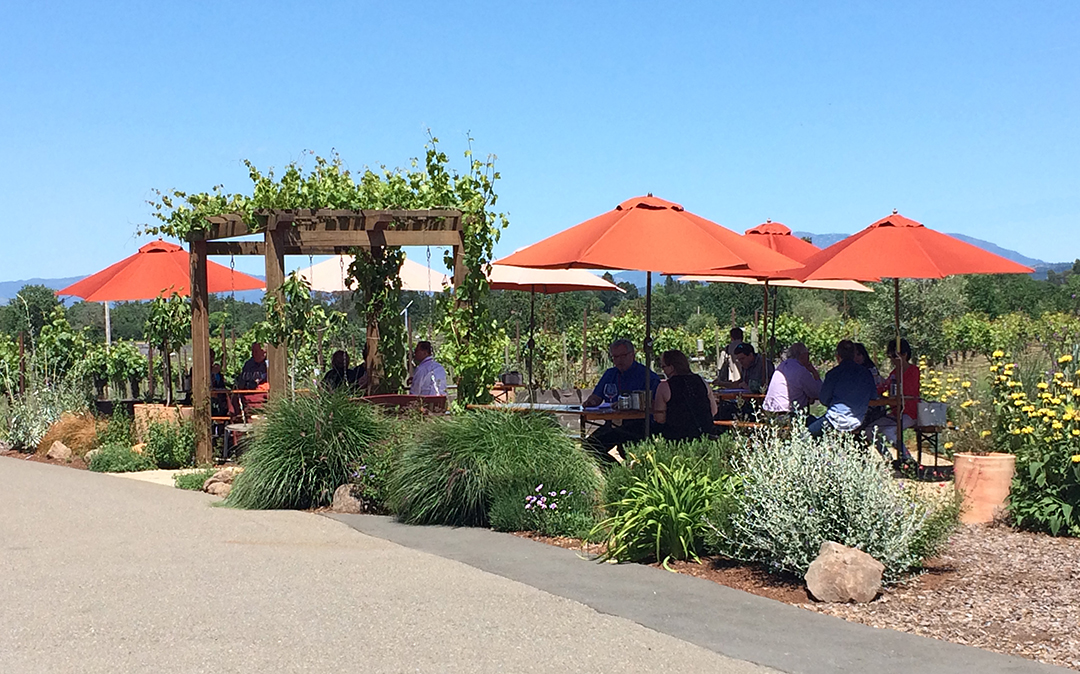 Russian River Valley Top 10 Wineries