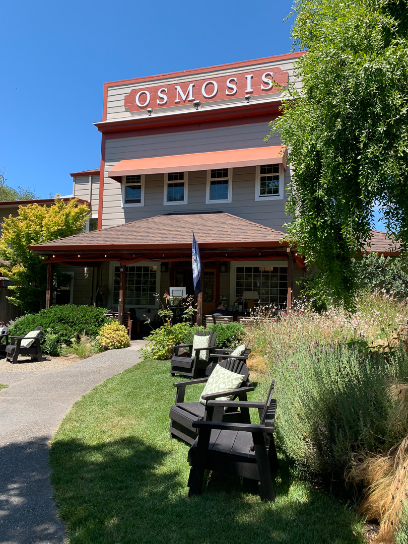 My Afternoon at Osmosis Day Spa Sanctuary