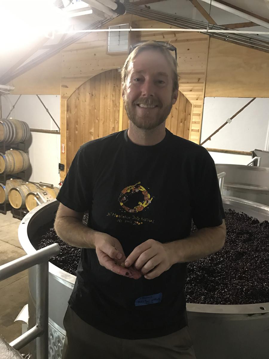 Bien Nacido Winery Harvest