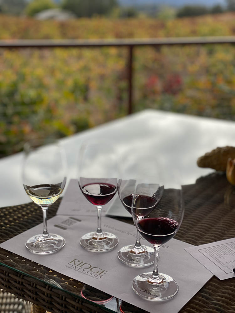 Ridge Winery and Vineyards