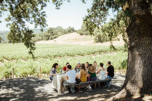 Vineyard Picnic Lunch at Robert Young Estate Winery