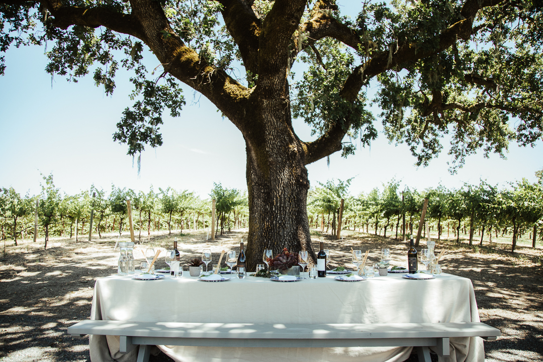 Robert Young Estate Winery by Elise Aileen Photo