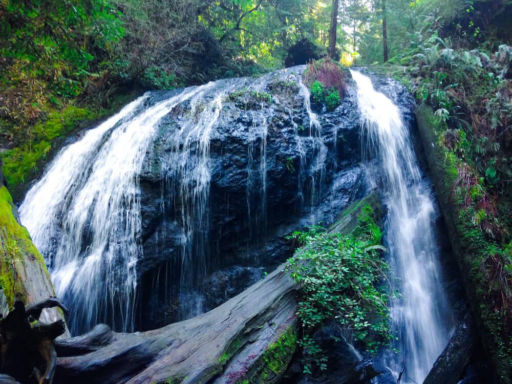 Best Hiking Trails in Mendocino California