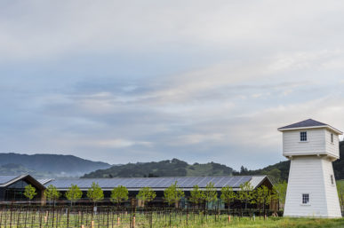 The Best Wineries in Alexander Valley, Sonoma