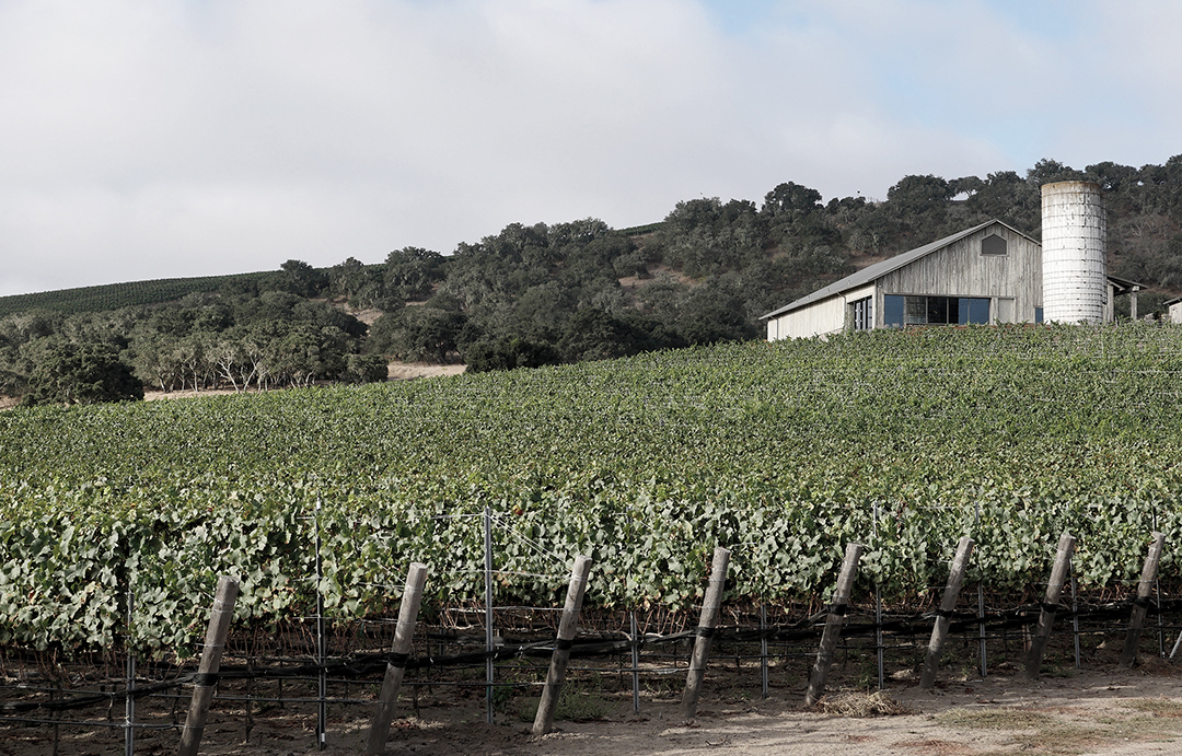 Spear Vineyards & Winery