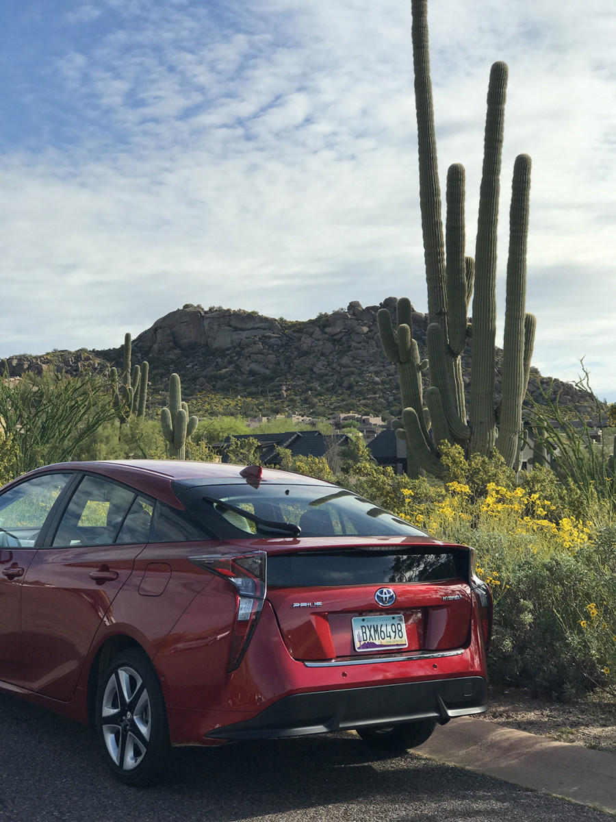 Spring Training with Toyota
