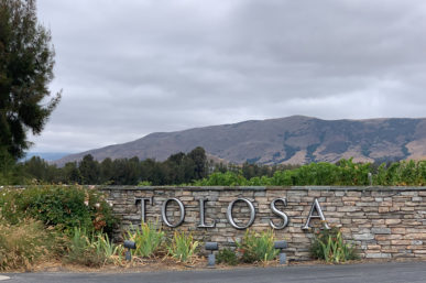 Tolosa Winery & Their Beautiful Vineyard Excursion