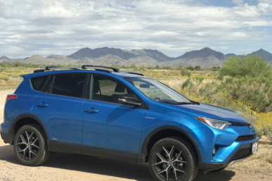 My Spring Training Adventure with Toyota