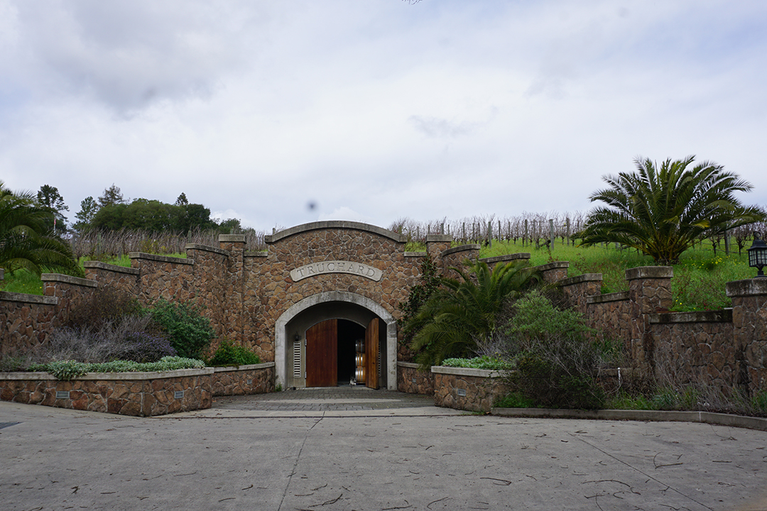 Best Wineries in Carneros Napa